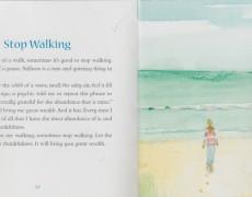 Stop Walking